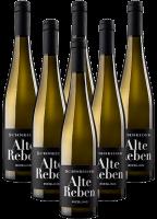 Markus Schneider Alte Reben Riesling trocken Pfalz 5+1 Angebot
