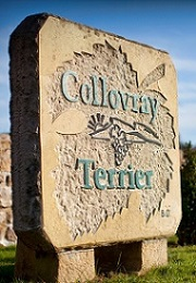 Domaine Collovray & Terrier