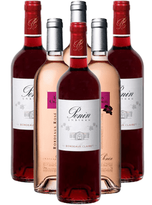 Chateau Penin Rosé trocken Bordeaux Frankreich 6er Angebot