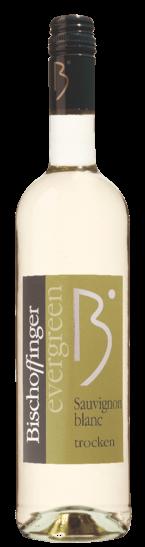 Sauvignon Blanc Evergreen trocken Bischoffinger Weißwein Baden