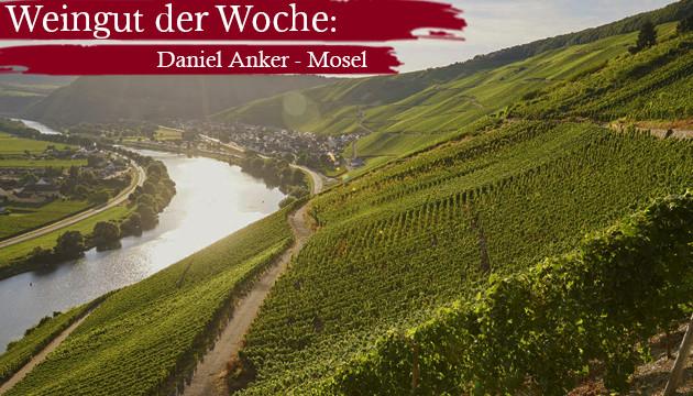 Weingut der Woche: Daniel Anker