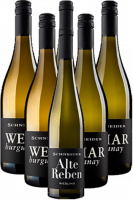 Markus Schneider Weißwein Probierpaket Pfalz 6er Angebot