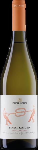 Soligo Pinot Grigio Bianco Marca Trevigiana Veneto Italien