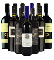 Primitivo Rotwein Probierpaket Italien 12er Angebot