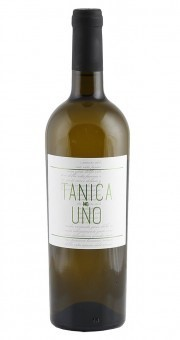 Tollo Bianco Tanica No Uno Chardonnay d'Abruzzo IGP 2020 Italien