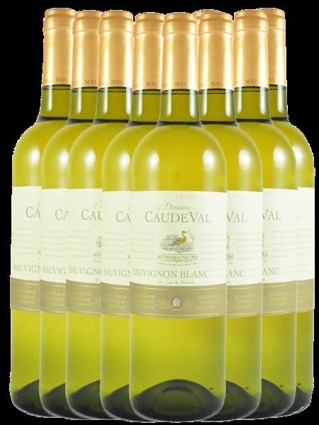 Caude Val Sauvignon Blanc IGP Paul Mas Frankreich 11+1 Angebot