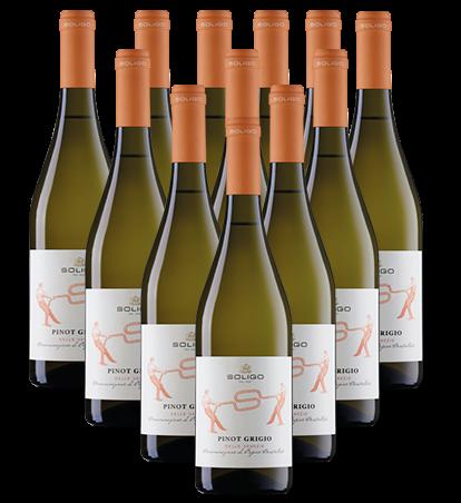 Soligo Pinot Grigio Bianco IGT Italien 12er Angebot