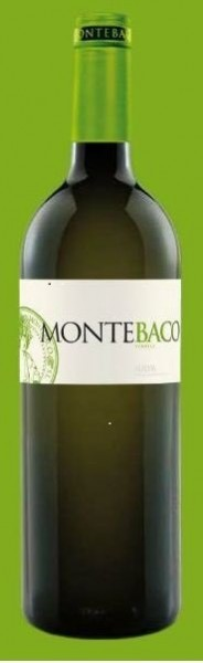 Montebaco Blanco Verdejo Rueda Spanien Wein Shop Die Bodega