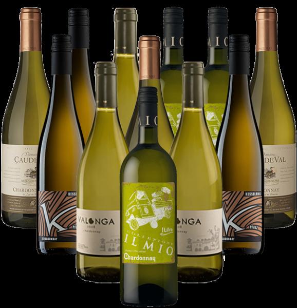 Chardonnay Probierpaket Weißwein 12er Angebot