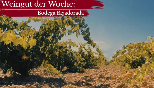 Weingut der Woche - Bodega Rejadorada