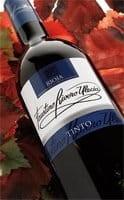 Faustino Seleccion Rioja Tinto Wein Spanien Die Bodega online