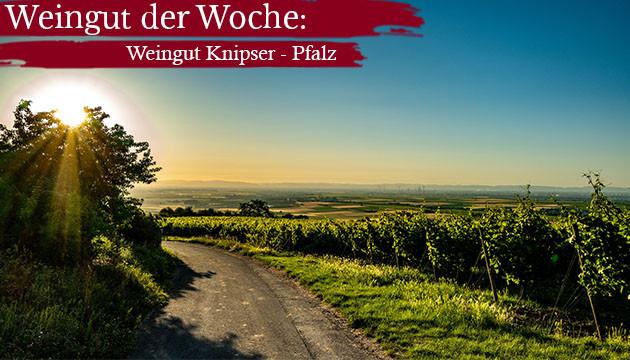 Weingut der Woche: Knipser - Pfalz