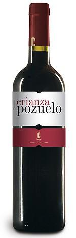 Bodegas Castano Rotwein Pozuelo Crianza aus Spanien