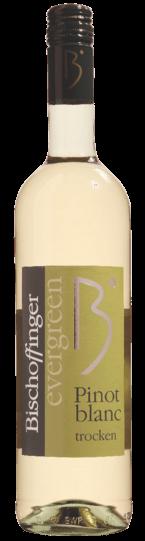 Pinot Blanc Evergreen trocken Bischoffinger Weißwein Baden