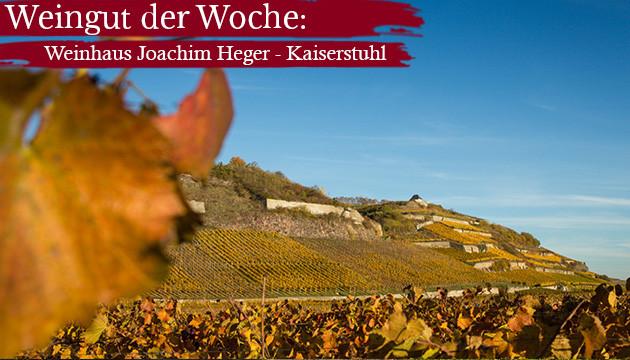 Weingut der Woche: Weinhaus Joachim Heger - Kaiserstuhl