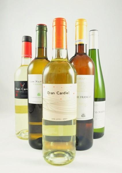 Rueda Weißwein Probierpaket Spanien 6er Angebot