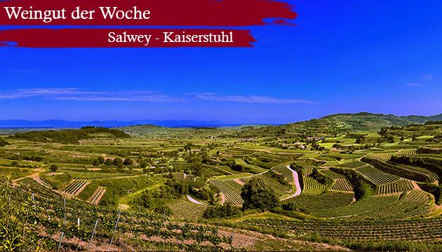 Weingut der Woche: Salwey - Kaiserstuhl