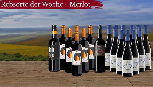Merlot Weine