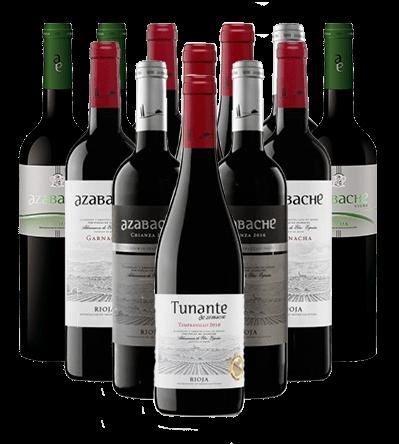 Azabache Weinpaket Rioja Spanien 12er Angebot