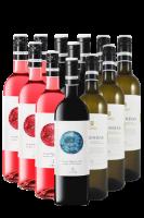 Ochoa Calendas Weine Navarra Spanien 12er Angebot